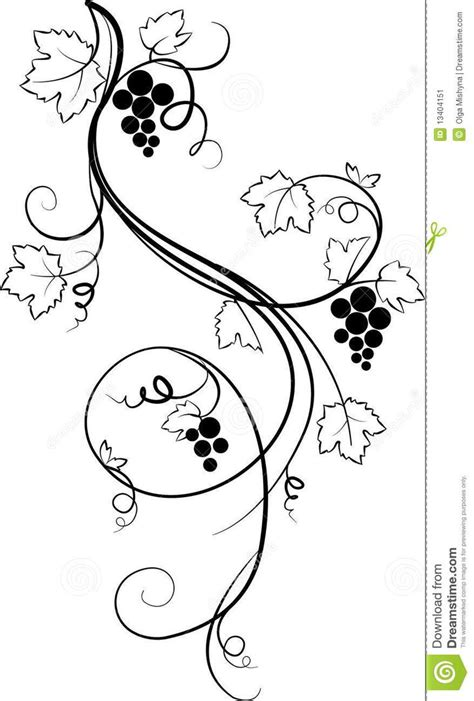 How To Search On Vine How To Draw Grapes On A Vine Www Imgkid The Image Kid Has It
