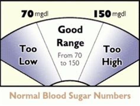 normal blood sugar for dogs 1000 images about diabetic recipes on blood sugar diabetes and normal