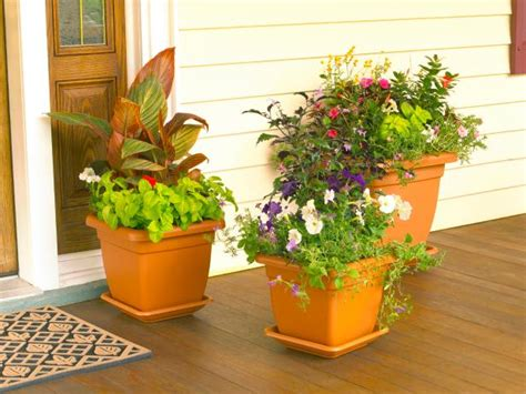 Design For Potted Plants For Shade Ideas How To Design A Container Garden Hgtv