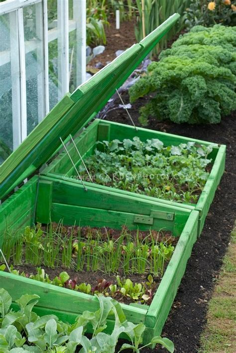 Cold Frame Gardening by Colorful Cold Frame Gardening