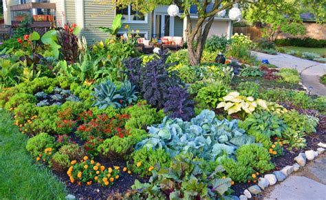 what to plant in a vegetable garden flowers not to plant with vegetables