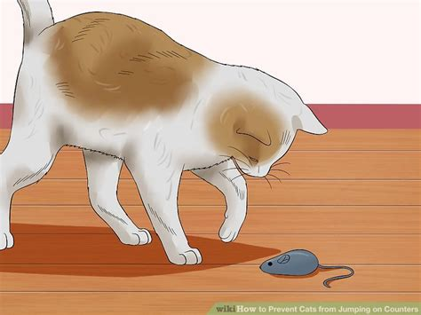 how to keep cats counters and tables 3 ways to prevent cats from jumping on counters wikihow
