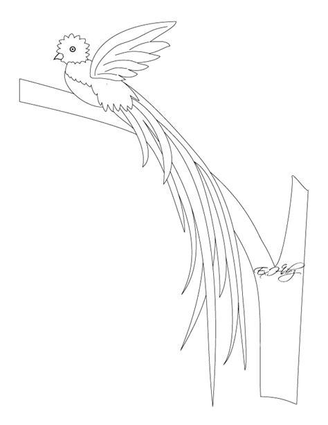 imagenes de quetzal a lapiz dibujos de los simbolos patrios miblogchapin s blog