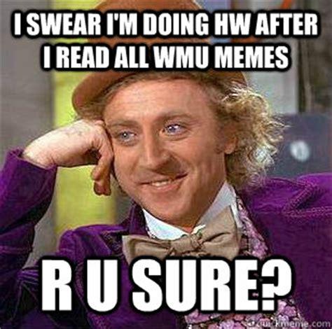 Funny Swearing Memes - i swear i m doing hw after i read all wmu memes r u sure