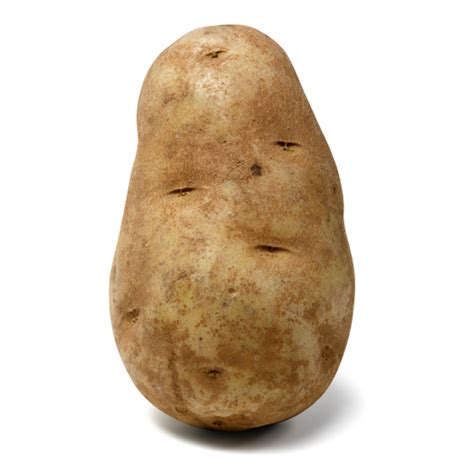 Definition Of Potato by Annual Desk Cleaning Day Is Now Complete Every Other Day