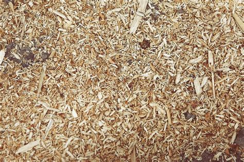Serbuk Gergaji Hamster 3 great uses for wood shavings gi shavings llc