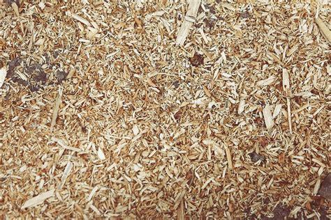 Serbuk Gergaji Hamster 3 great uses for wood shavings gi shavings llc