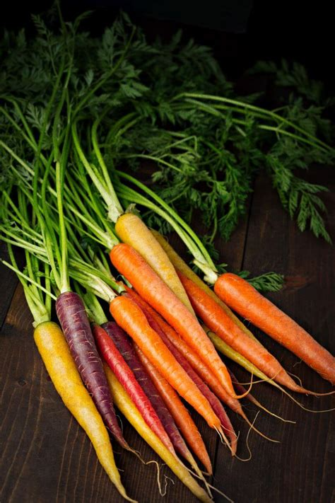 colorful carrots homeogarden