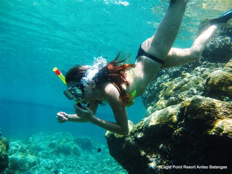 dive in resort anilao diving resort snorkeling philippines photos