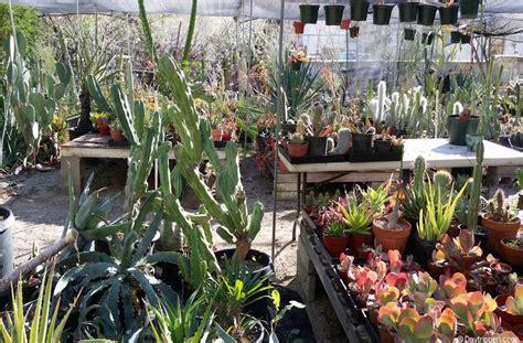 Moorten Botanical Gardens Palm Springs Day Trip Moorten Botanical Garden Palm Springs