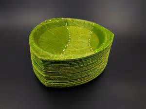 House Plans Courtyard these beautiful biodegradable plates are made entirely