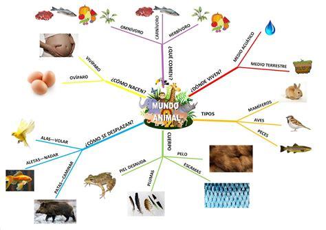imagenes mentales y tecnicas 161 el blog de 2 186 mapa mental quot mundo animal quot