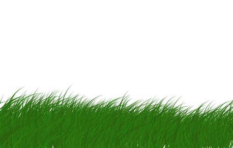 gambar rumput format png bentuk bentuk rumput hdesign