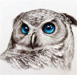 color drawings 40 color pencil drawings to you cooing with