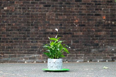 Origami Pot - growth resizable origami plant pot by studio ayaskan homeli
