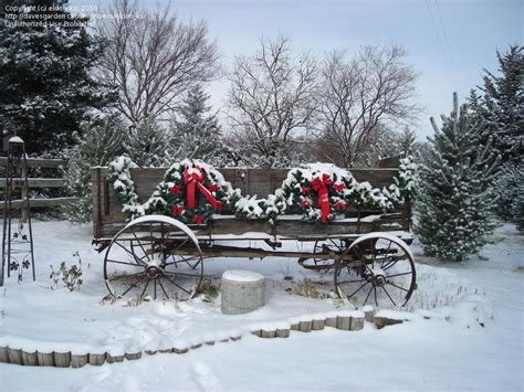 images of christmas in the country country christmas wallpapers wallpapersafari