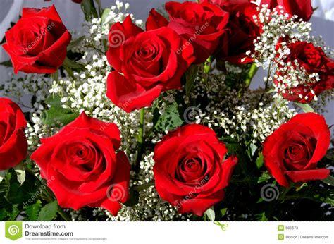 imagine fiori mazzo di fotografie stock immagine 605673