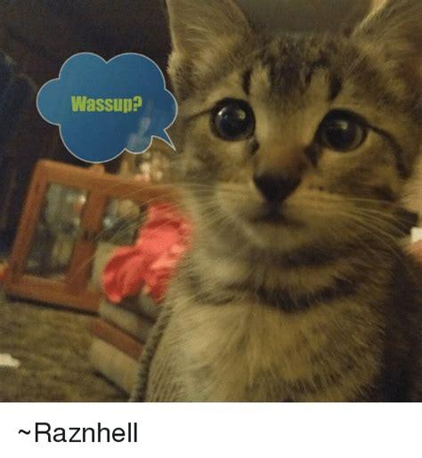 Wassup Meme - wassup raznhell meme on sizzle