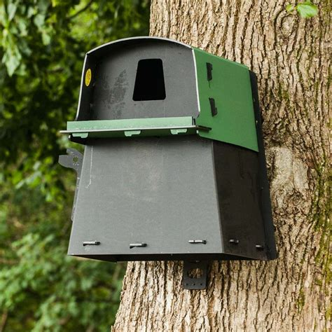 owl boxes eco barn owl nest box the nestbox company
