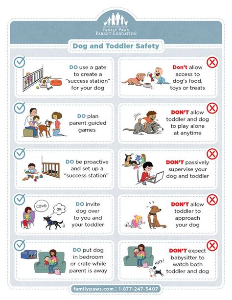 puppies and toddlers and toddler safety how to prevent bites k9aggression