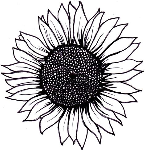sunflower tattoo idea inkkkkk pinterest sunflowers