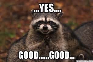 Meme Generator Raccoon - evil racoon 2