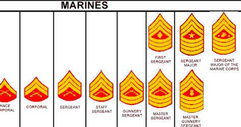 marine corps ranks us marine lover name of the officer shows copyscape