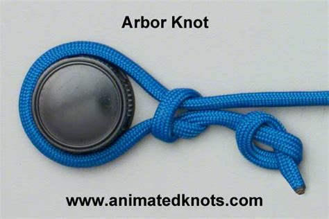 arbor knot how to tie the arbor knot knots