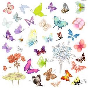 4 designer butterfly