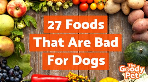 are bad for dogs the 27 worst foods that are bad for dogs warning toxic the goody pet