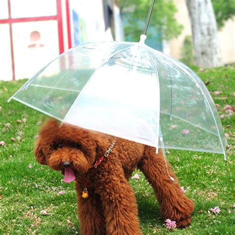 leash umbrella transparent waterproof pet umbrella raincoat with leash us 8 99