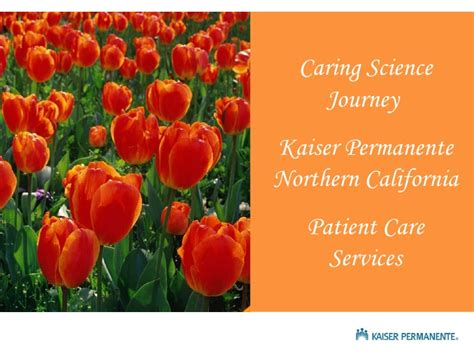 service northern california delivering results through person centred care kaiser permanente pat