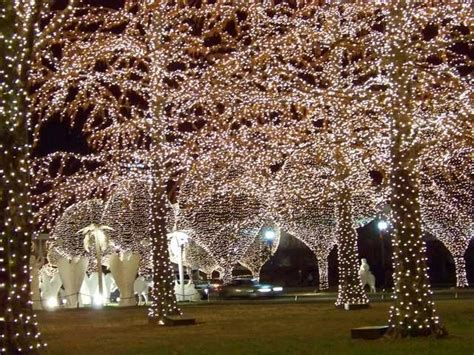 opryland hotel at christmas christmas pinterest