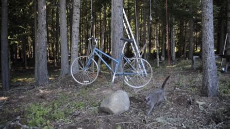 tree elevator kid builds bicycle powered elevator for his diy tiny
