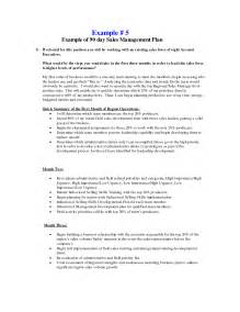 sales manager business plan template 30 60 90 day sales plan template best business template