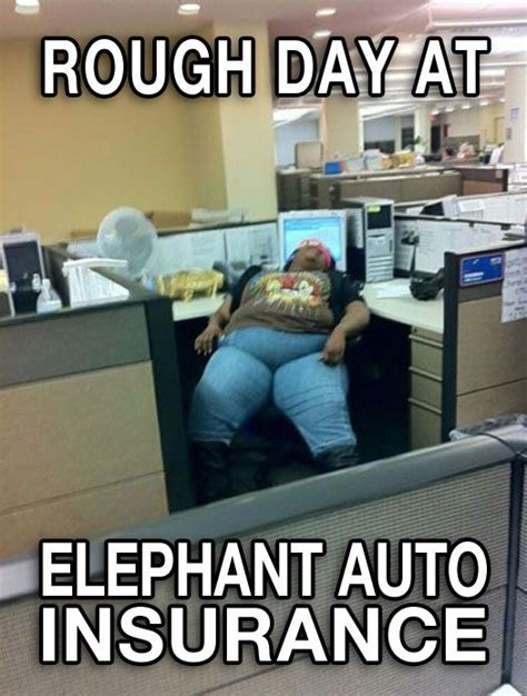 Car Insurance Meme - now that s customer service no you did nt pinterest