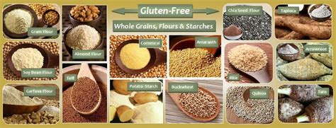 7 whole grains list what foods can you with atkins diet page 4 of 4