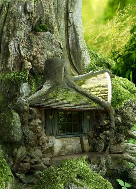 Forest House by 17 Best Ideas About Forest House On Pinterest House In