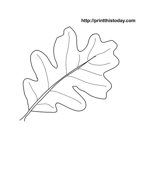 coloring pages oak leaf oak leaf coloring pages fall fun quot movember quot coloring
