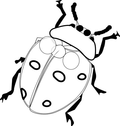 coloring images free printable ladybug coloring pages for