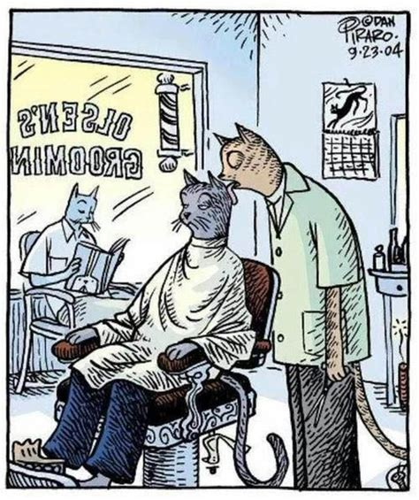 Funny Hairdresser Memes - cat barber grooming hair cartoon funny joke pictures
