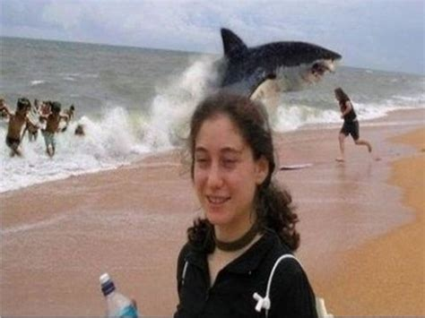 best shark attack vote no on top 5 shark attack beaches