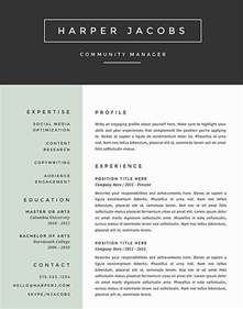 Best Resumes Templates by Best Resume Format 2017 Template Learnhowtoloseweight Net