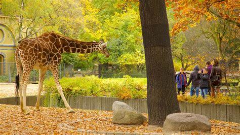 Superior 16 Acres Garden #3: Berlin-Zoo-25005.jpg