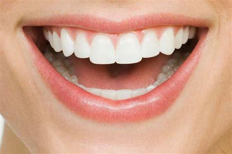Biaya Pemutihan Gigi Jogja fakta gigi mengenai gigi tentang gigi gigi manusia