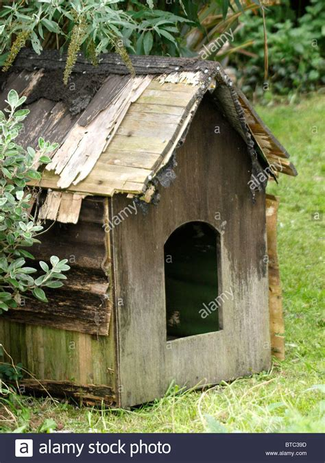 dog house uk old dog house uk stock photo royalty free image 32228153 alamy