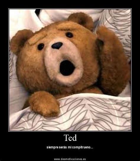imagenes groseras del oso ted desmotivaciones del oso ted para ponerle humor a las redes