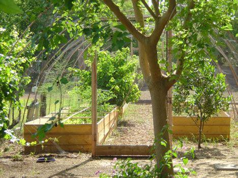Backyard Permaculture Design by Hoe Groot Moet Je Tuin Zijn Om 100 Zelfvoorzienend Te