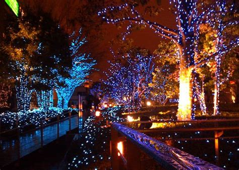 christmas light shows in georgia southern mamas 187 blog archive 187 december nights holiday