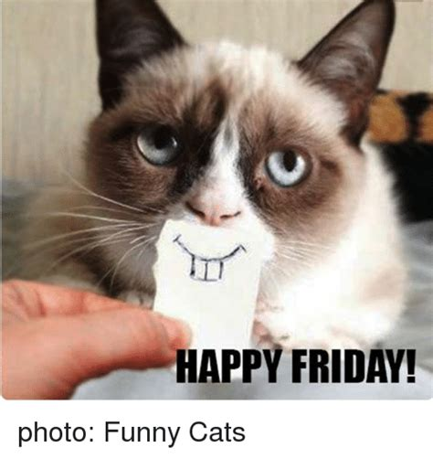 Friday Cat Meme - happy friday photo funny cats cats meme on me me